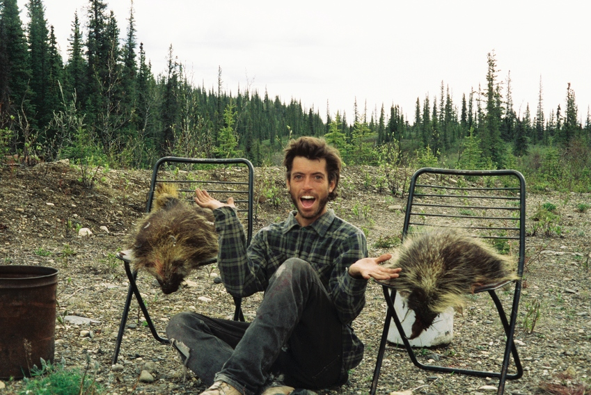 Essays on into the wild about chris mccandless